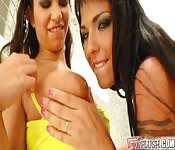 Lesbian scene with two vicious brunettes