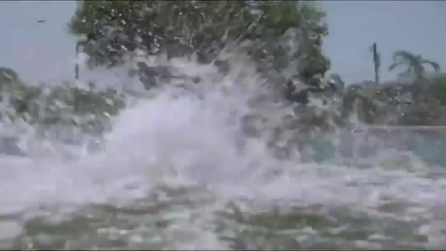 filme die perfekte strandaffaire